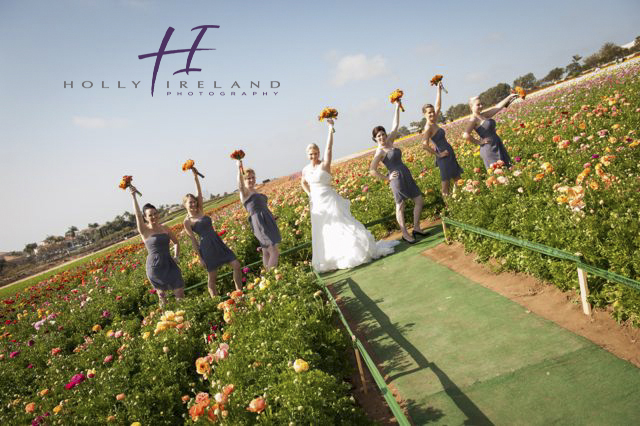 carlsbad flower field wedding photos archives holly ireland photography. Black Bedroom Furniture Sets. Home Design Ideas