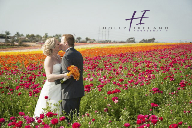 carlsbad ca famous flower field wedding photos with stacy and tony 3 22 13. Black Bedroom Furniture Sets. Home Design Ideas