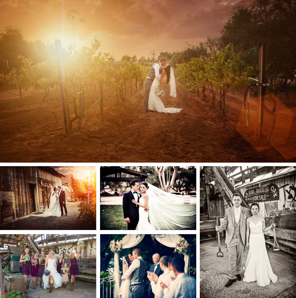 Bernardo Winery Wedding Photography